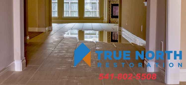 Water/Flood Damage Restoration